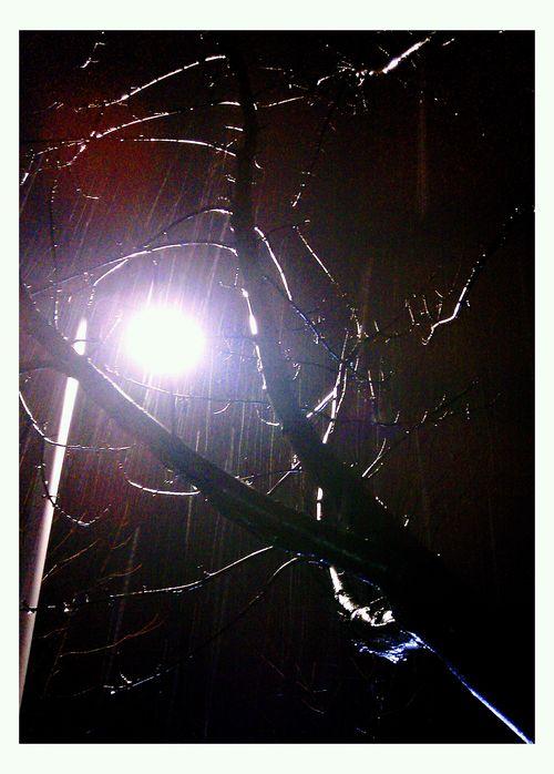 December 27-2011 Snow